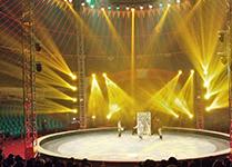 Sichuan Coastal City Russian Circus